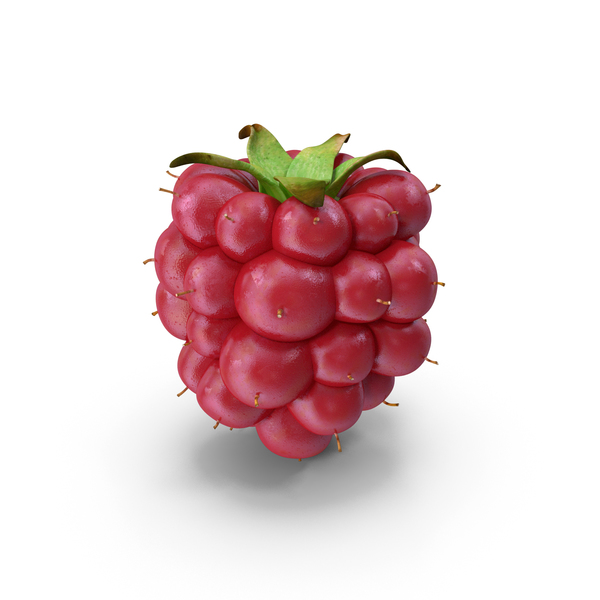 Not Ripe Berry Blackberry PNG & PSD Images