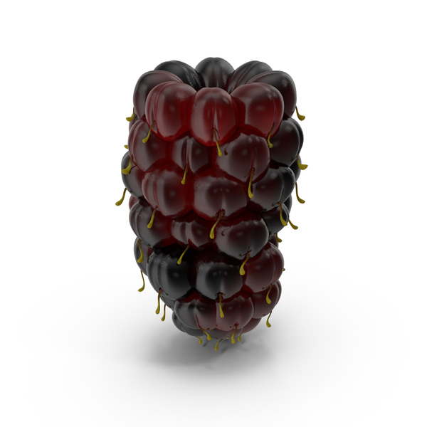 Fruit: Olallieberry PNG & PSD Images