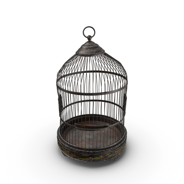 Old Bird Cage Object