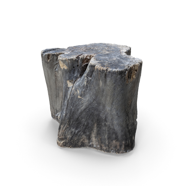 Tree Stump: Old Wood Log PNG & PSD Images