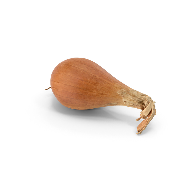 Onion PNG & PSD Images