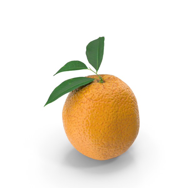 Orange with Leaves PNG & PSD Images
