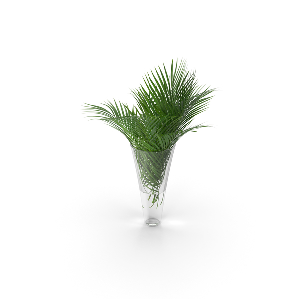 Vase: Palm Leaves PNG & PSD Images