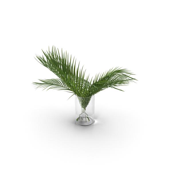 Vase: Palm Leaves PNG & PSD Images