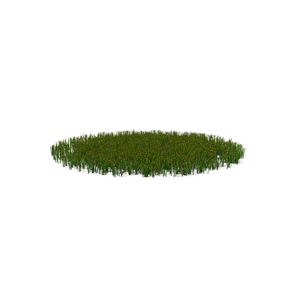 Patch of Grass Object