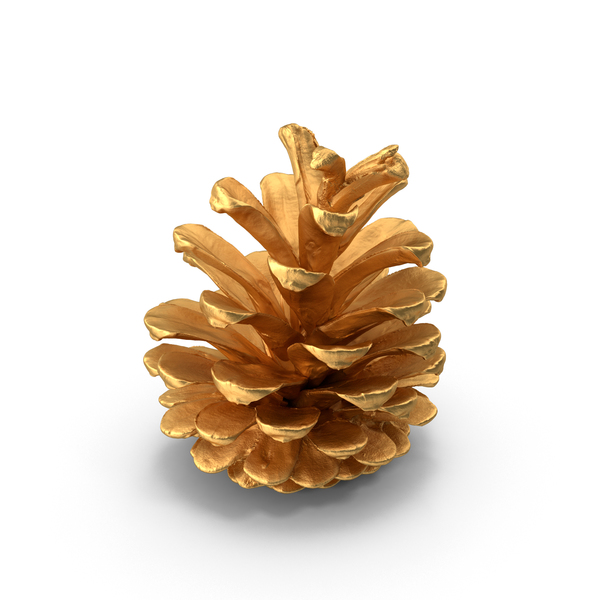 Conifer: Pine Cone Gold PNG & PSD Images
