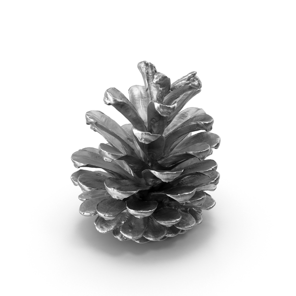 Pine Cone Silver PNG & PSD Images