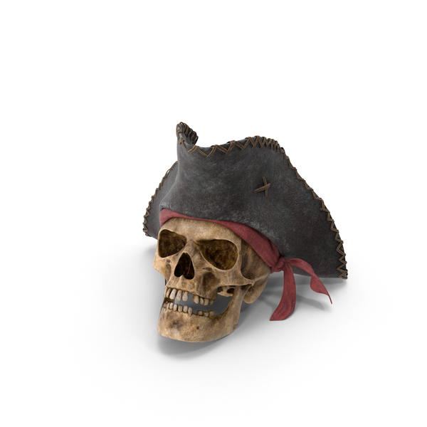 Pirate Skull Object