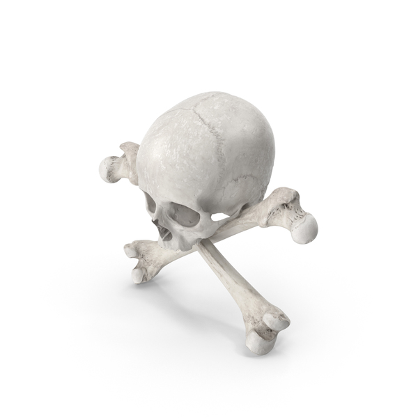 Pirate Skull and Bones Composition White PNG & PSD Images