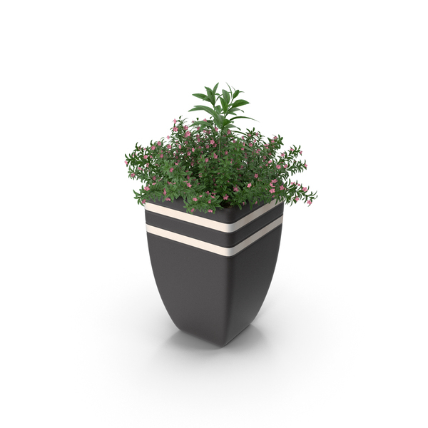 Planter: Plant In Pot PNG & PSD Images