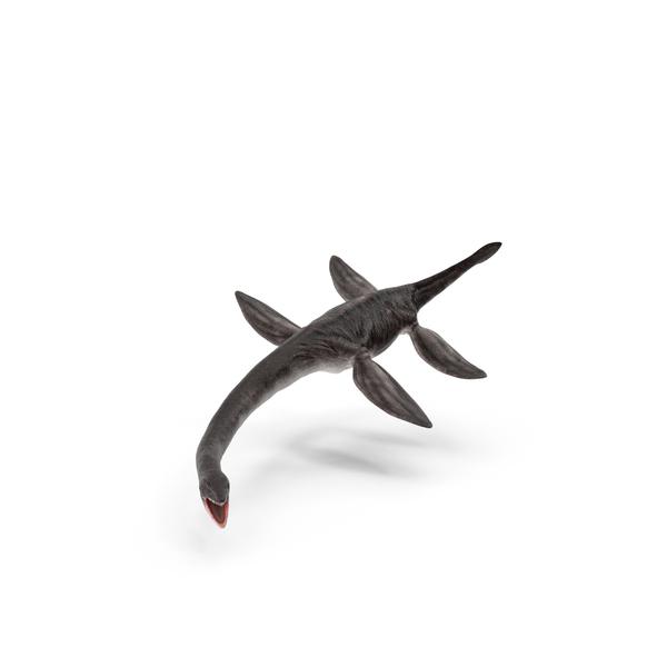 Plesiosaur PNG & PSD Images