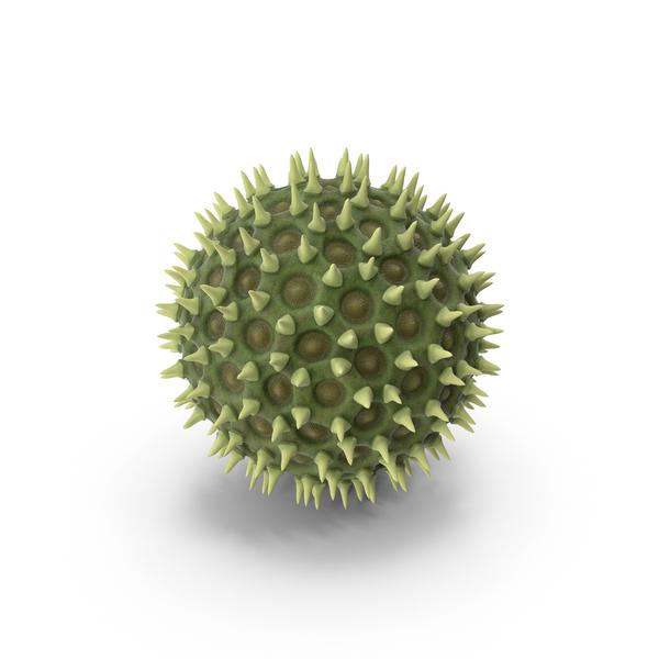 Pollen Particle PNG & PSD Images