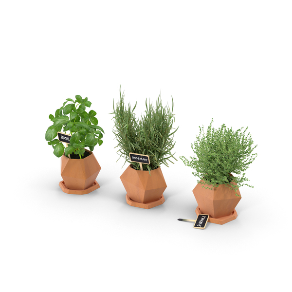 Potted Herbs PNG & PSD Images