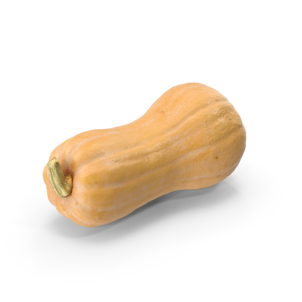 Pumpkin Butternut PNG & PSD Images