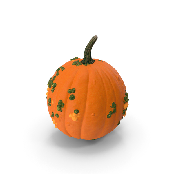 Pumpkin With Warts PNG & PSD Images