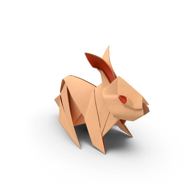 Rabbit PNG & PSD Images