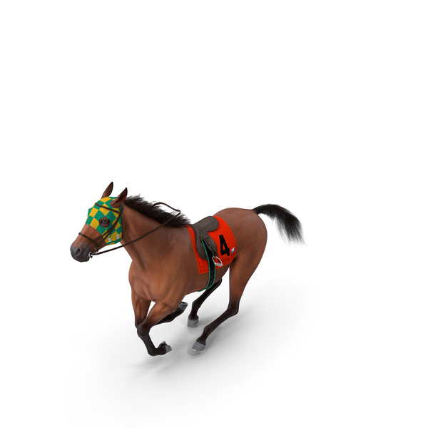 Racehorse Gallop Pose Fur PNG & PSD Images