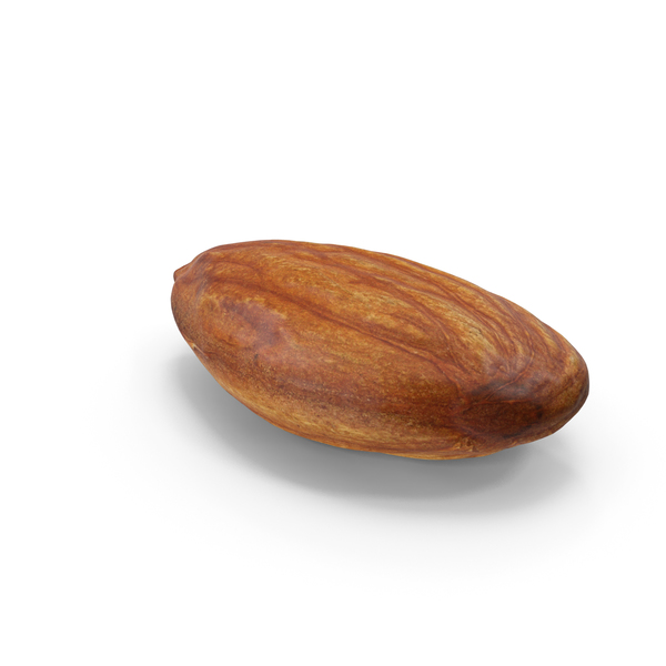 Raw Almond PNG & PSD Images