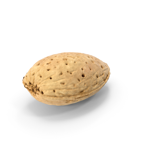 Raw Almond In Shell PNG & PSD Images
