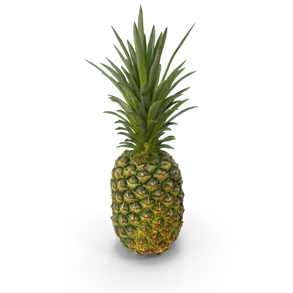 Realistic Whole Pineapple PNG & PSD Images