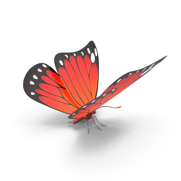 Red Butterfly PNG & PSD Images