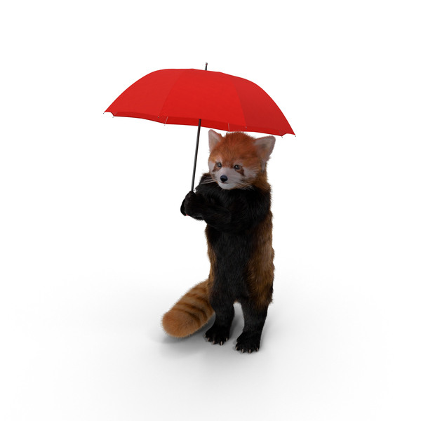 Red Panda with Umbrella Object