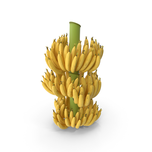 Ripe Yellow Banana Cluster PNG & PSD Images