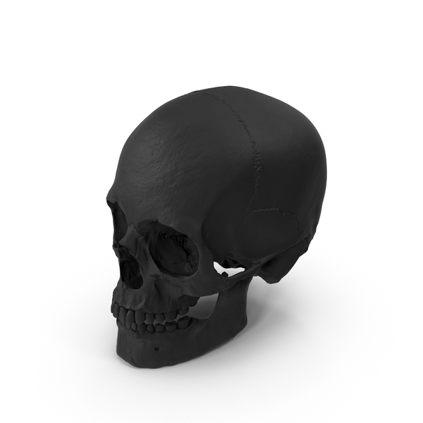 Rubber Skull PNG & PSD Images