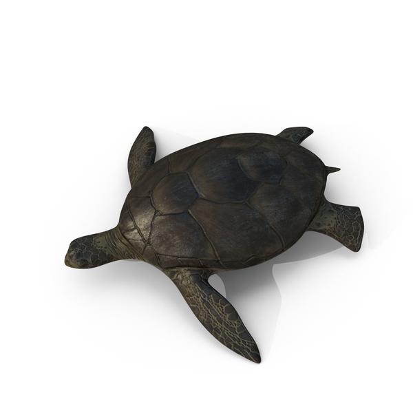 Sea Turtle Object
