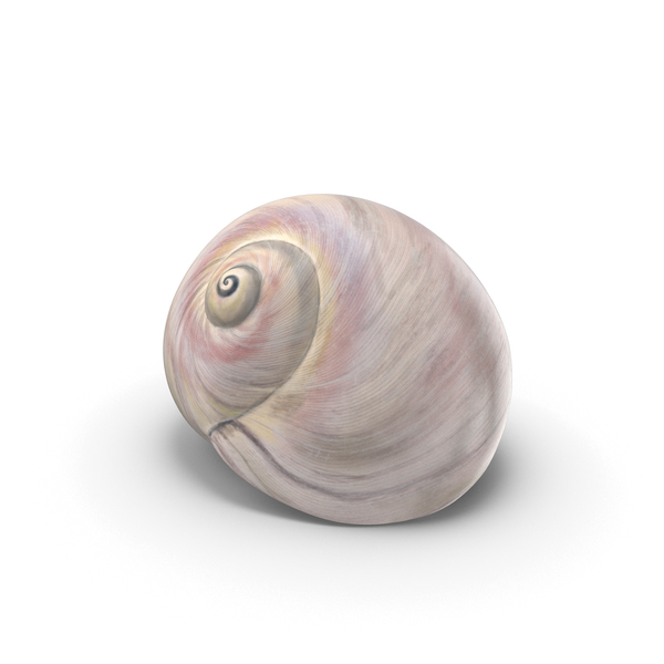 Sharkeye Moon Shell PNG & PSD Images