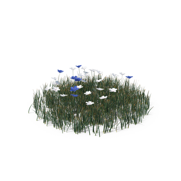 Simple Grass PNG & PSD Images
