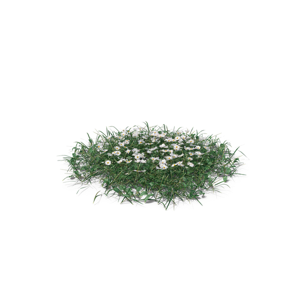 Simple Grass Large PNG & PSD Images