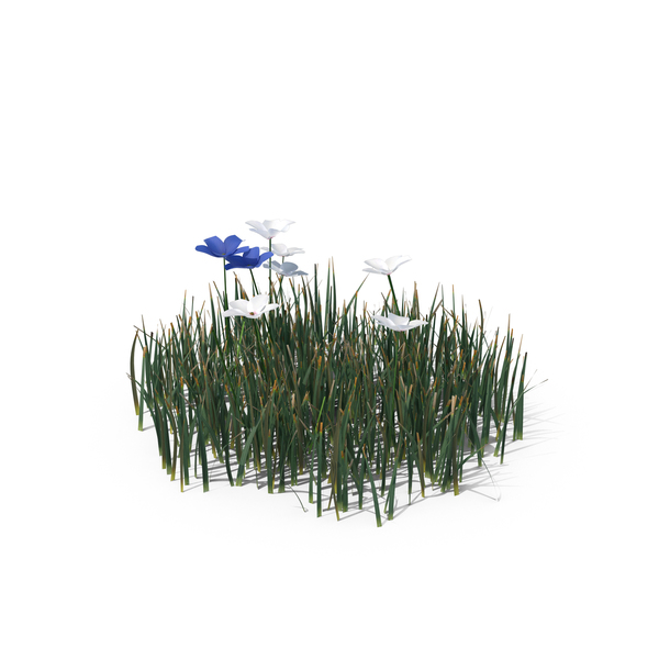 Grasses: Simple Grass (Small) PNG & PSD Images