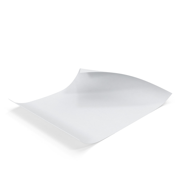 Single Paper Sheet Curled Object