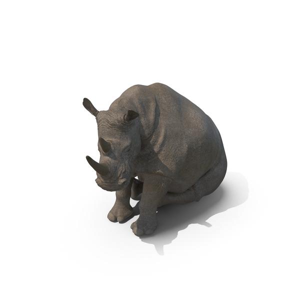 Rhinoceros: Sitting Rhino PNG & PSD Images