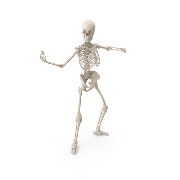 Male: Skeleton Bring It PNG & PSD Images