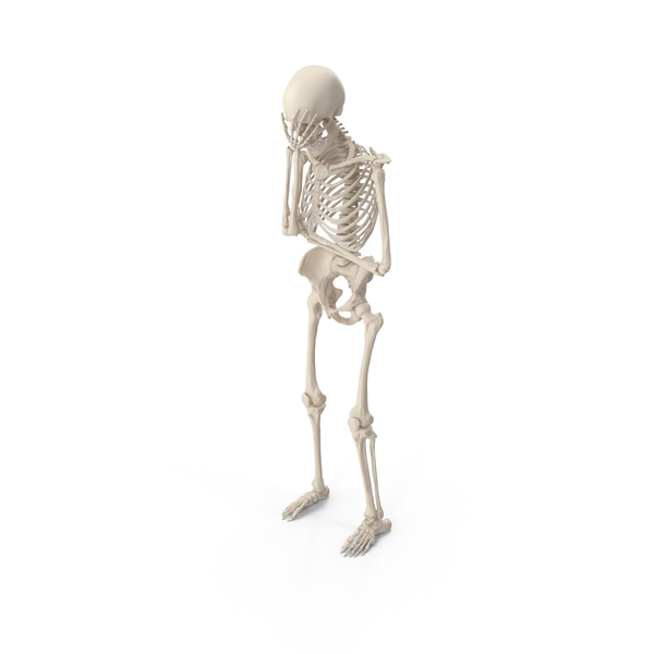 Skeleton Facepalm PNG & PSD Images