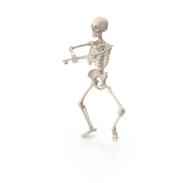 Skeleton Gangnam Style PNG & PSD Images