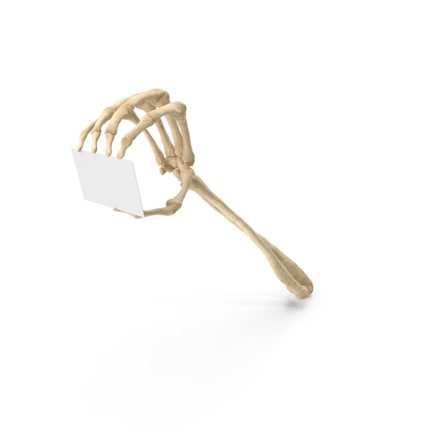 Skeleton Hand Holding a Blank Card PNG & PSD Images