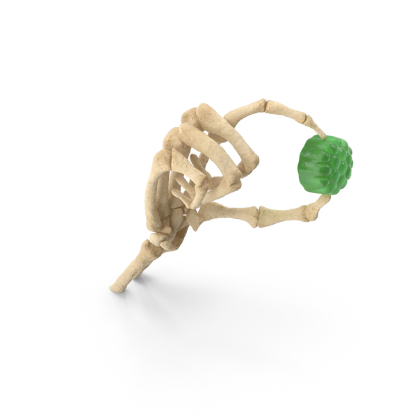 Skeleton Hand Holding a Gummy Candy PNG & PSD Images
