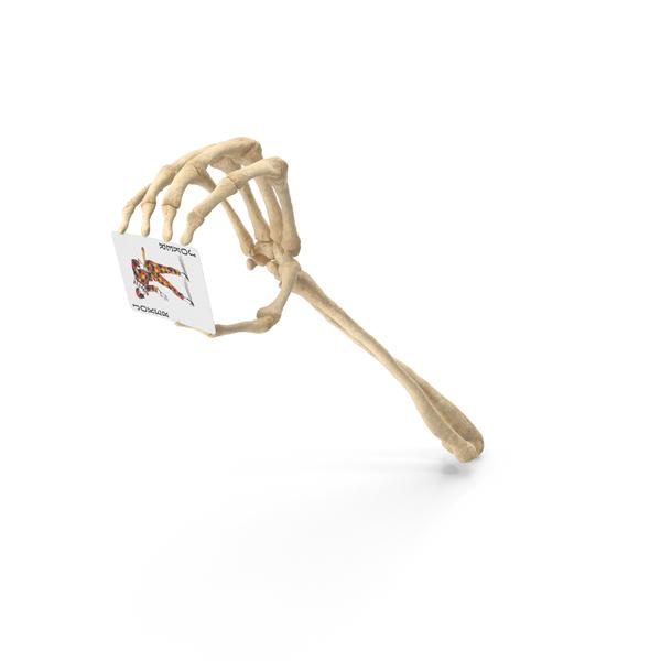 Skeleton Hand Holding a Joker Card PNG & PSD Images