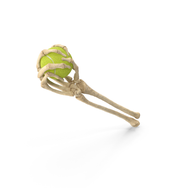 Skeleton Hand Holding a Tennis Ball PNG & PSD Images
