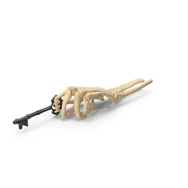 Skeleton Hand Holding an Old Worn Key PNG & PSD Images