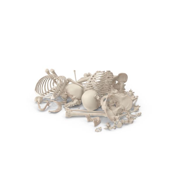 Male: Skeleton Pile of Bones PNG & PSD Images