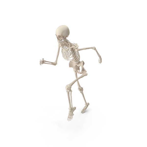 Skeleton Running PNG & PSD Images