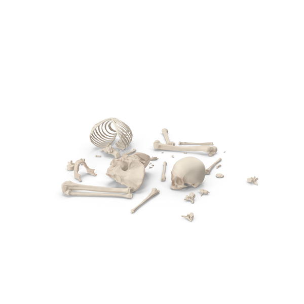 Skeleton Scattered Bones PNG & PSD Images