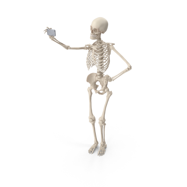 Male: Skeleton Selfie PNG & PSD Images