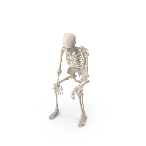 Male: Skeleton Sitting PNG & PSD Images