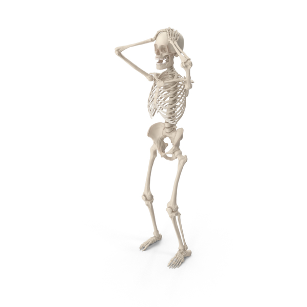 Skeleton Surrender Cobra PNG & PSD Images