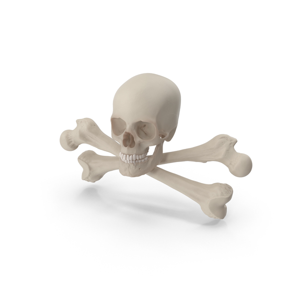 Pirate Flag: Skull and Cross Bones Object